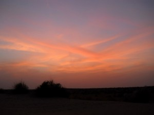 camel safari desert india 13