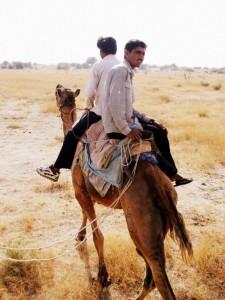 camel safari desert india 22