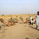 camel safari desert india 25