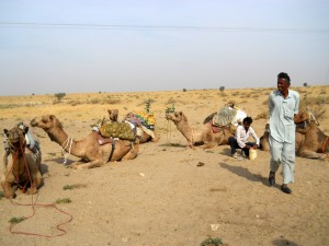 camel safari desert india 25