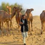 camel safari desert india 27