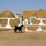 camel safari desert india 3-2