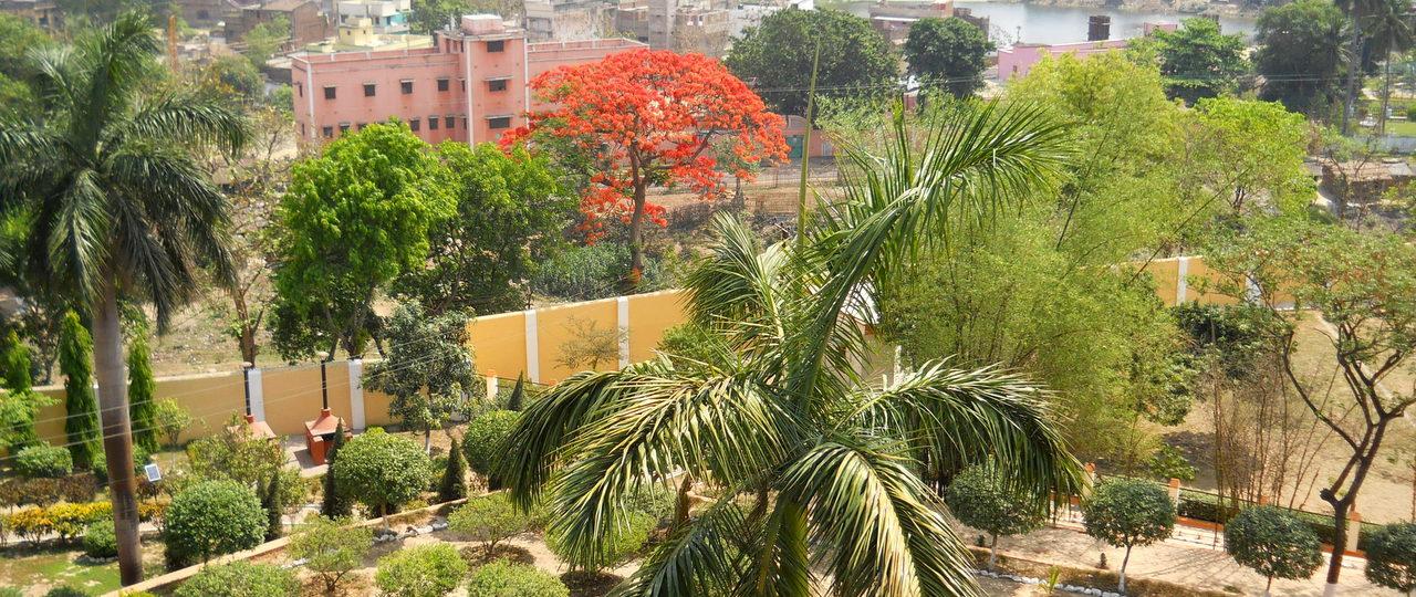 natura india primavara