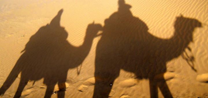 14 - desert